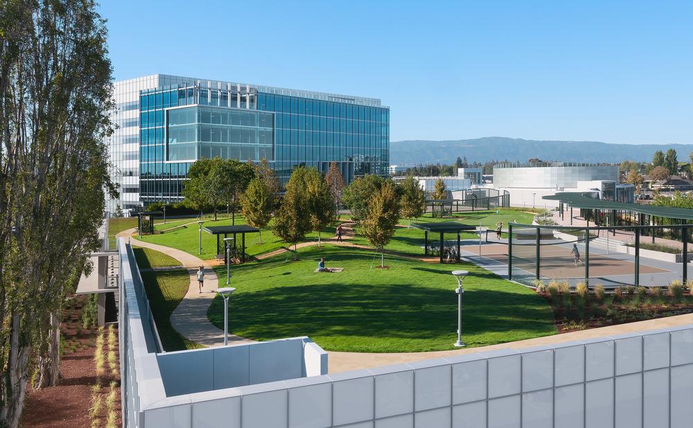 Un jardin suspendu chez google chroniques d 39 architecture for Google jardin