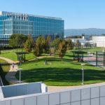 Un jardin suspendu chez Google
