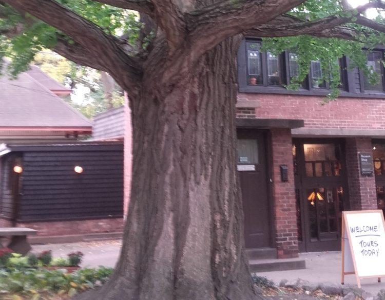 La maison et le studio de Franck Lloyd Wright @A.L.