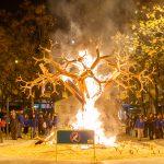 Les architectes qui plantaient un arbre – Epilogue