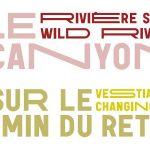 De la typographie politique de Ruedi Baur