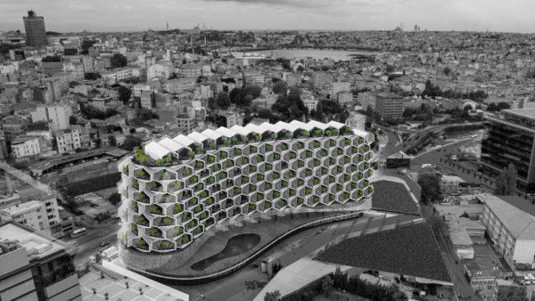 Ruralité urbaine à Istanbul, un oxymore ?