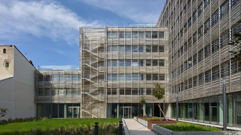 Bureaux Elipsys à Toulouse, du bon usage du bambou