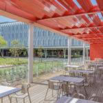 A Montpellier, le lycée autour d'une cour plantée par Hellin-Sebbag