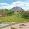 Dôme tropical pour le zoo de Beauval par Daniel Boitte architecture