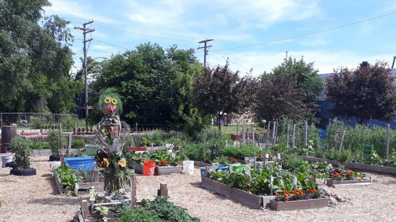 Pour en finir avec l'agriculture urbaine à Paris (et ailleurs)