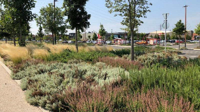 Victoire du paysage pour la remise au vert d'un centre commercial