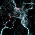 Trace et nature numérique : ordonner la donnée