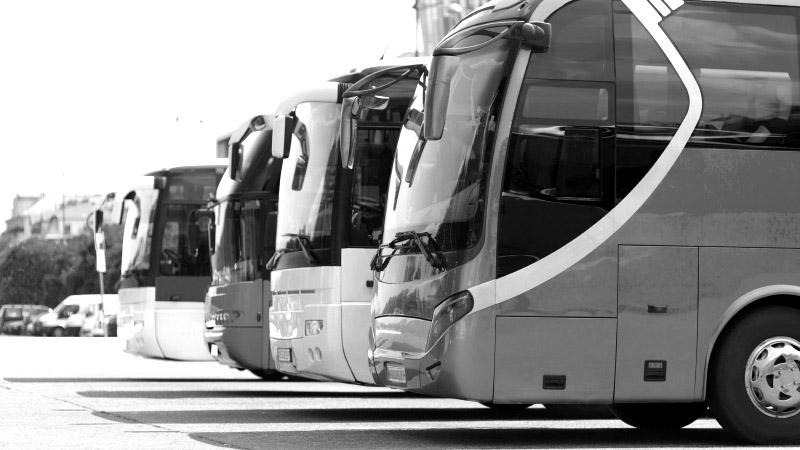 Pour chaque bus de l'hypertourisme, combien de SDF morts ?