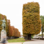 Champs-Elysées – histoire & perspectives : hier et aujourd'hui. Et demain ?