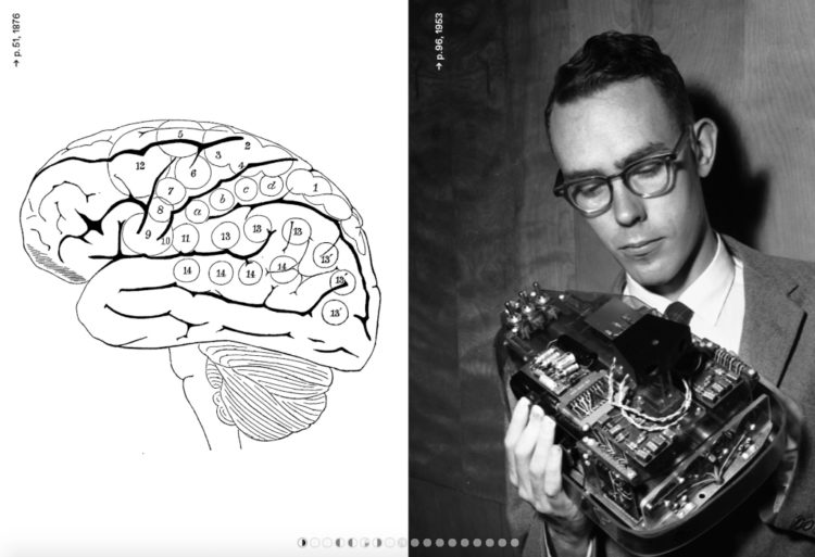 Intelligence Intelligences