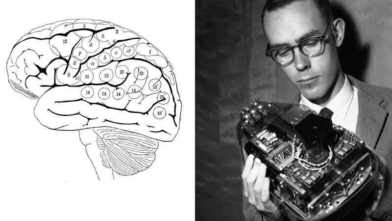 Intelligences numériques ou comment l'IA remplace nos neurones
