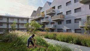 Immeuble Le Belvédère à Bordeaux - Bassins à flot (ANMA)
