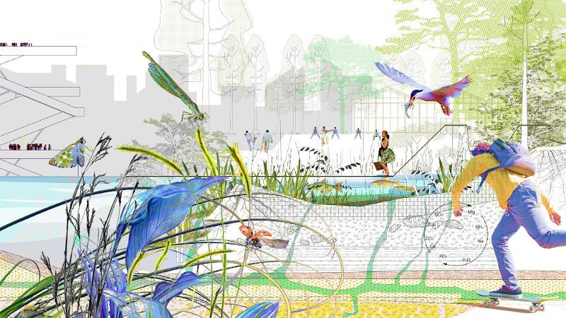 Agence Ter - Sols vivants, socles de la nature en ville