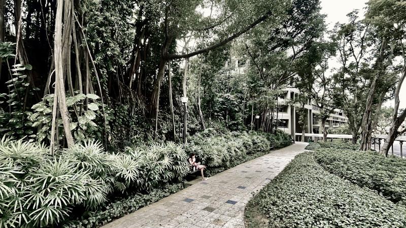 Géologies urbaines | Les paysages stratifiés de Singapour