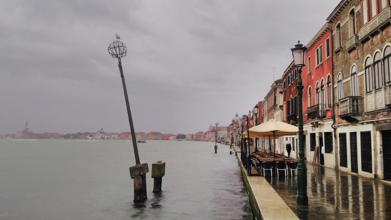Biennale de Venise, comme si vous n'y étiez pas